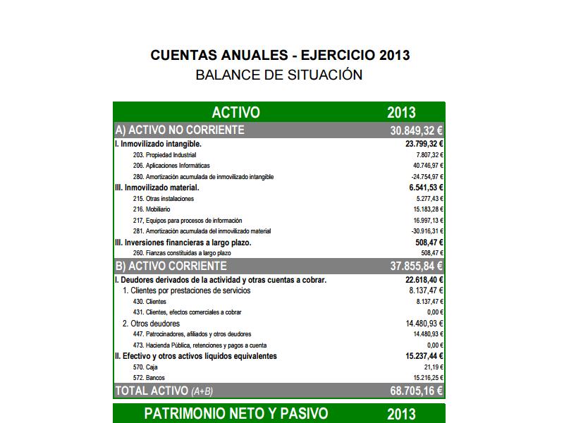 Cuentas Anuales 2013