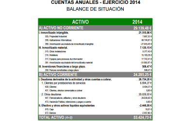 Cuentas Anuales 2014