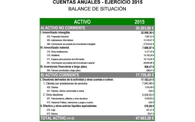 Cuentas Anuales 2015