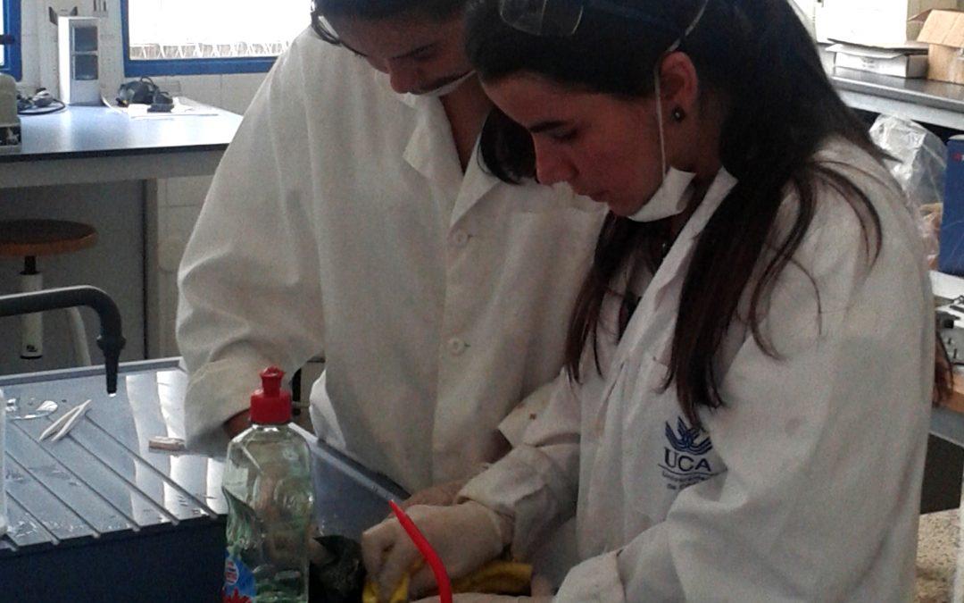 La Fundación Campus Tecnológico presenta novedades en la quinta edición de su  Campus de Verano Experiencias Investigadoras