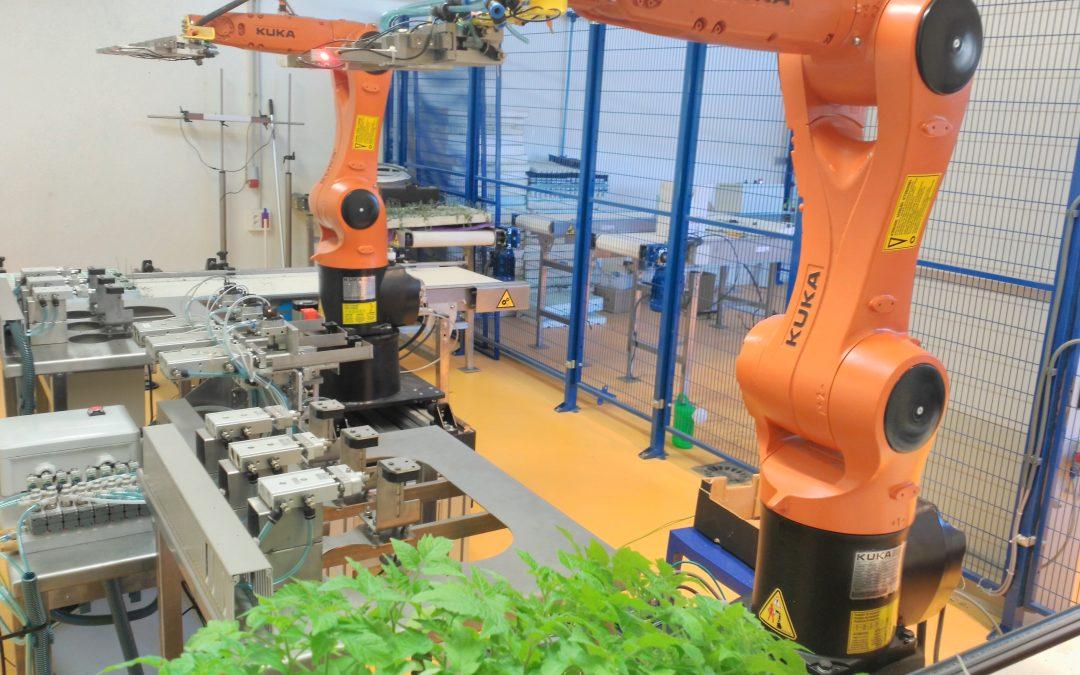 Fundación Tecnova presenta el primer robot para realizar injertos de hortícolas