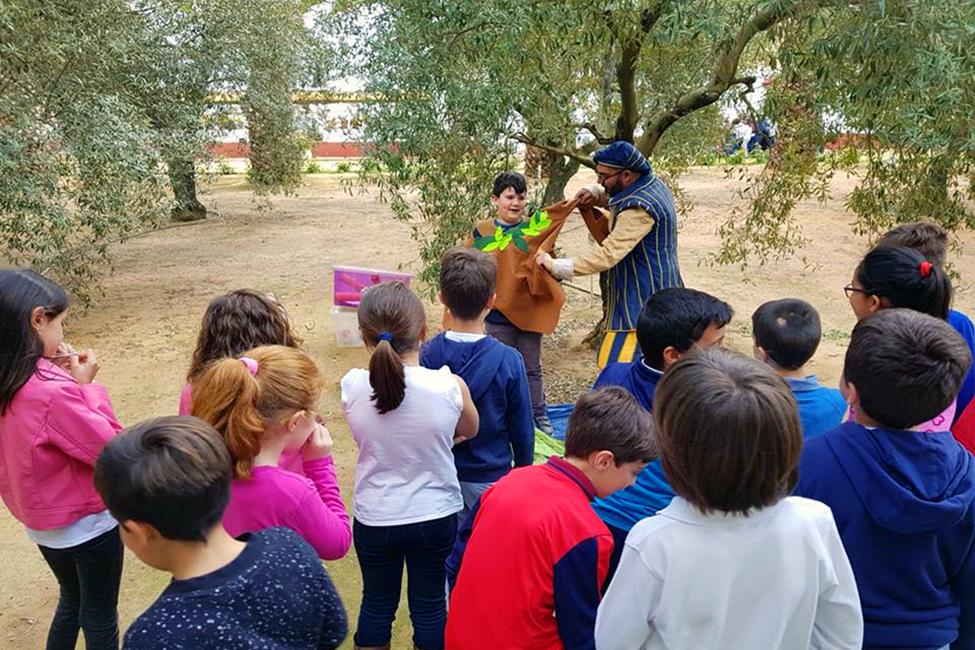 Casi 14.000 escolares sevillanos conocen la importancia de la cultura aceitera con Planeta Olivo