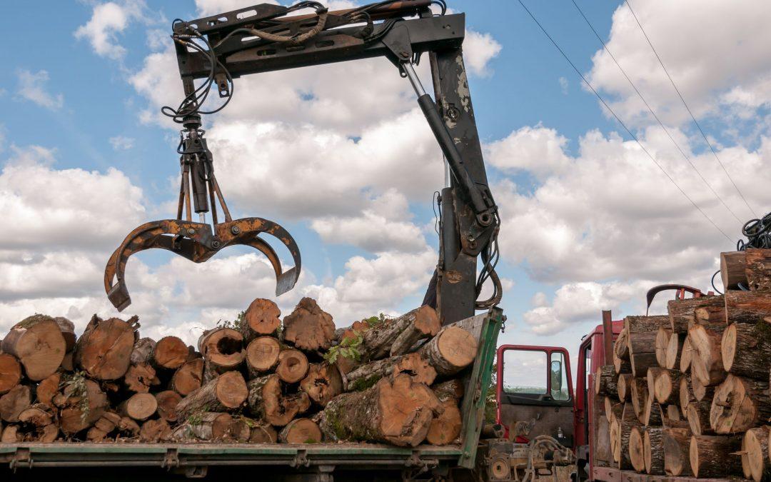El proyecto ChainWood, al que pertenece CTA, utilizará tecnología blockchain para mejorar la trazabilidad y eficiencia del suministro de madera en España