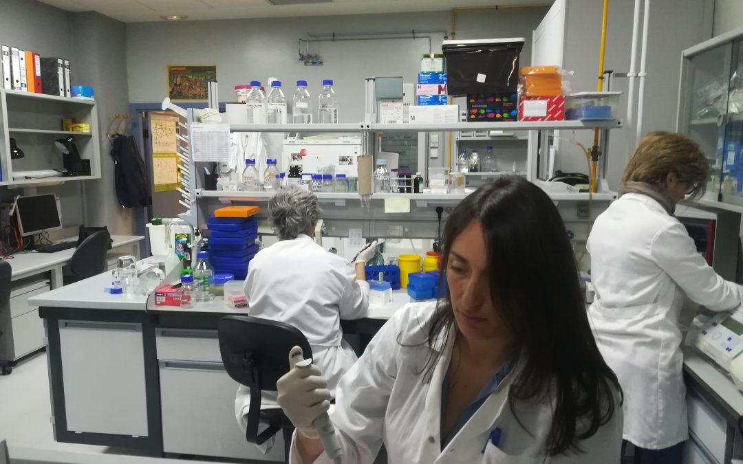 Investigadores de Cabimer recaudan fondos para un proyecto sobre la prevención de riesgos asociados al uso de radioterapia en niños con cáncer