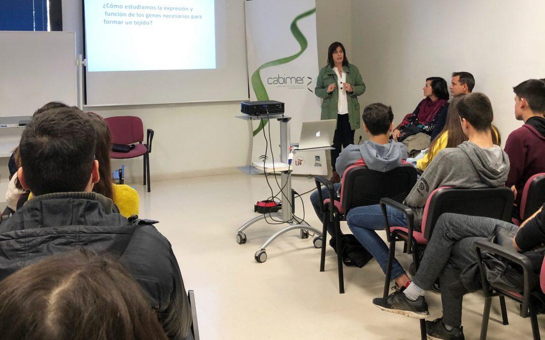 Cabimer abre sus puertas a estudiantes sevillanos en unas jornadas sobre investigación en salud