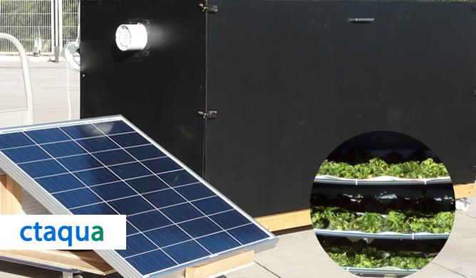 Ctaqua estrena prototipo de secador de macroalgas solar