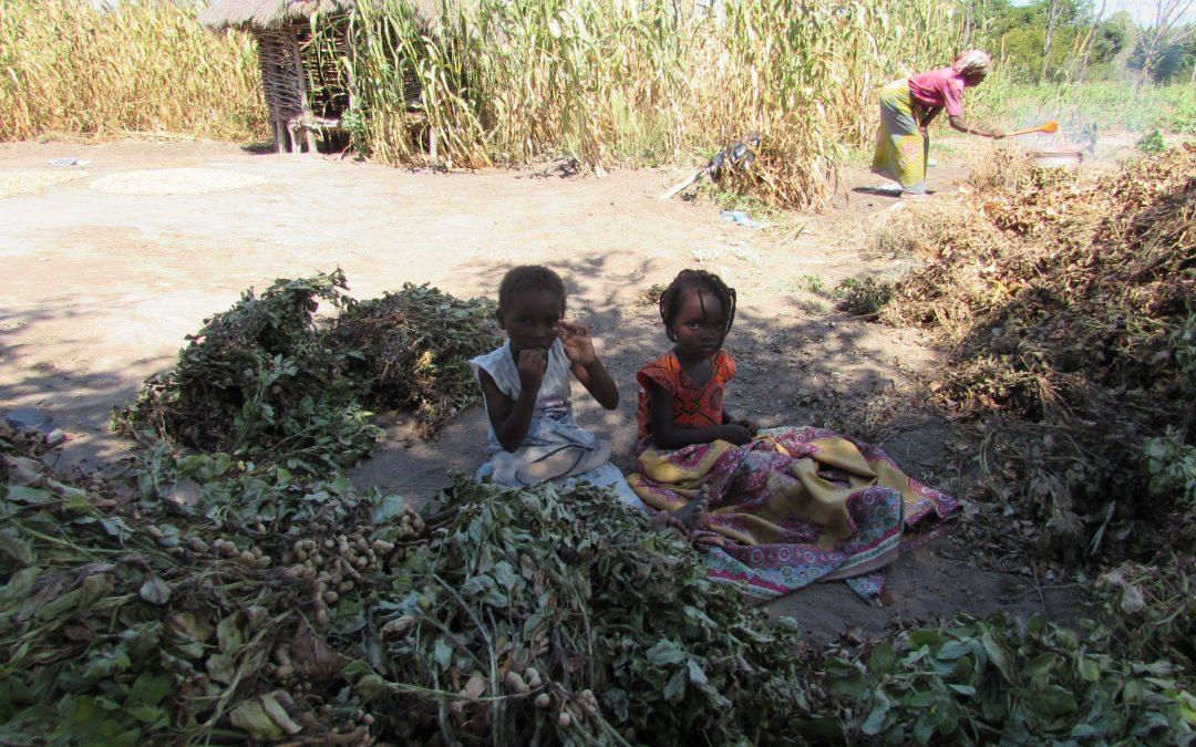 Madre Coraje y la AACID trabajan con 5 comunidades de Mozambique para hacer frente a las sequías e inundaciones