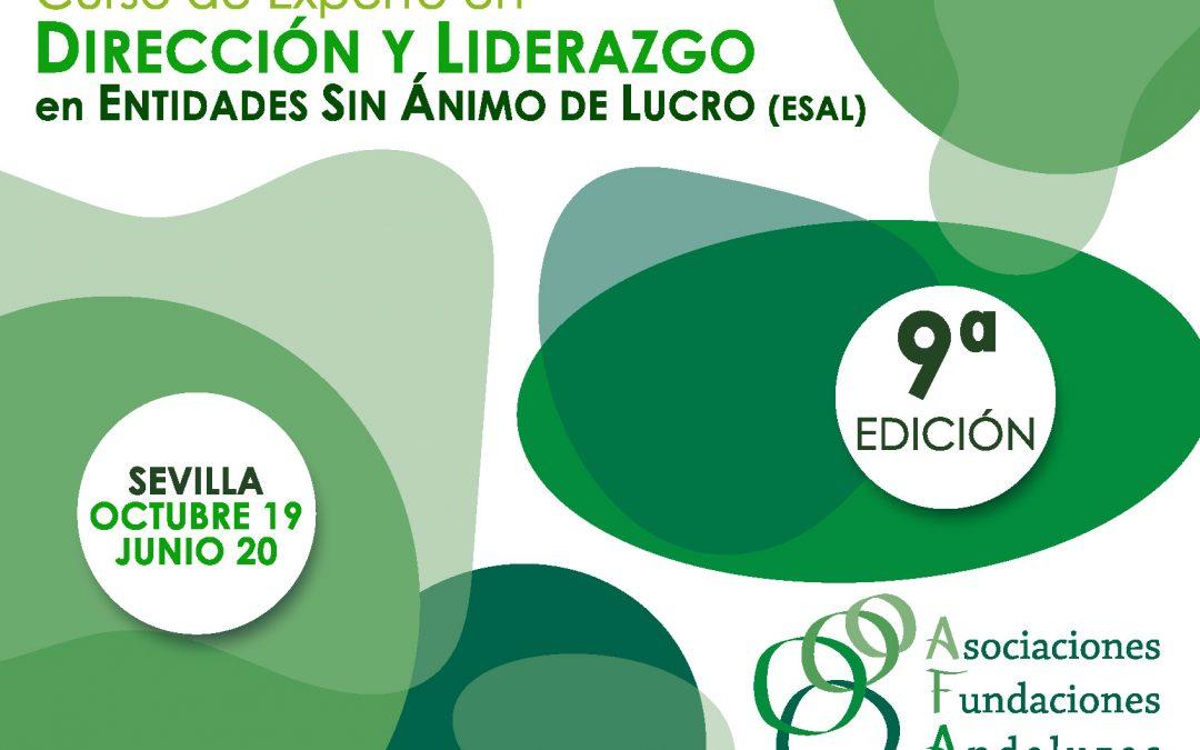 Últimas plazas para el Curso de Experto en Dirección y Liderazgo en Entidades Sin Ánimo de Lucro (ESAL)