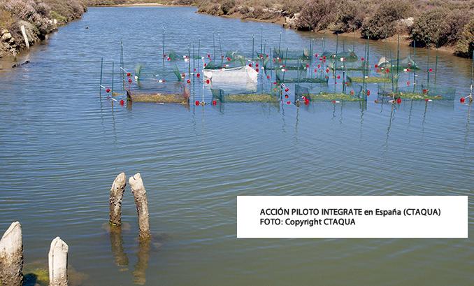 Expertos internacionales en acuicultura multitrófica concretan las claves para alcanzar una definición global de IMTA