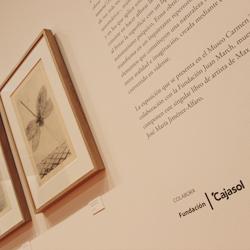La muestra del Thyssen «Max Ernst. Historial natural» centra la nueva colaboración de la Fundación Cajasol