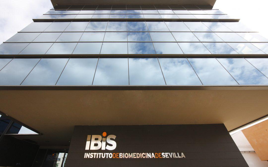 El Instituto de Biomedicina de Sevilla renueva su compromiso con la investigación traslacional y de excelencia