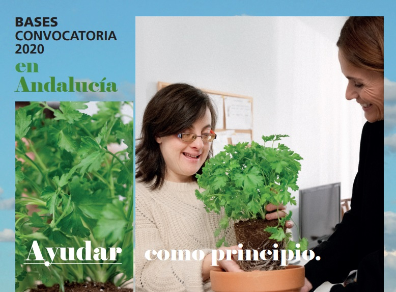 """Fundación """"La Caixa"""" abre una línea para financiar proyectos de entidades sin ánimo de lucro andaluzas"""