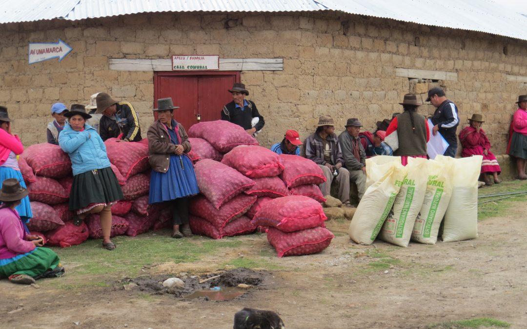 Madre Coraje y el Ayuntamiento de Chiclana se unen por el derecho a la alimentación de 41 familias empobrecidas de Perú