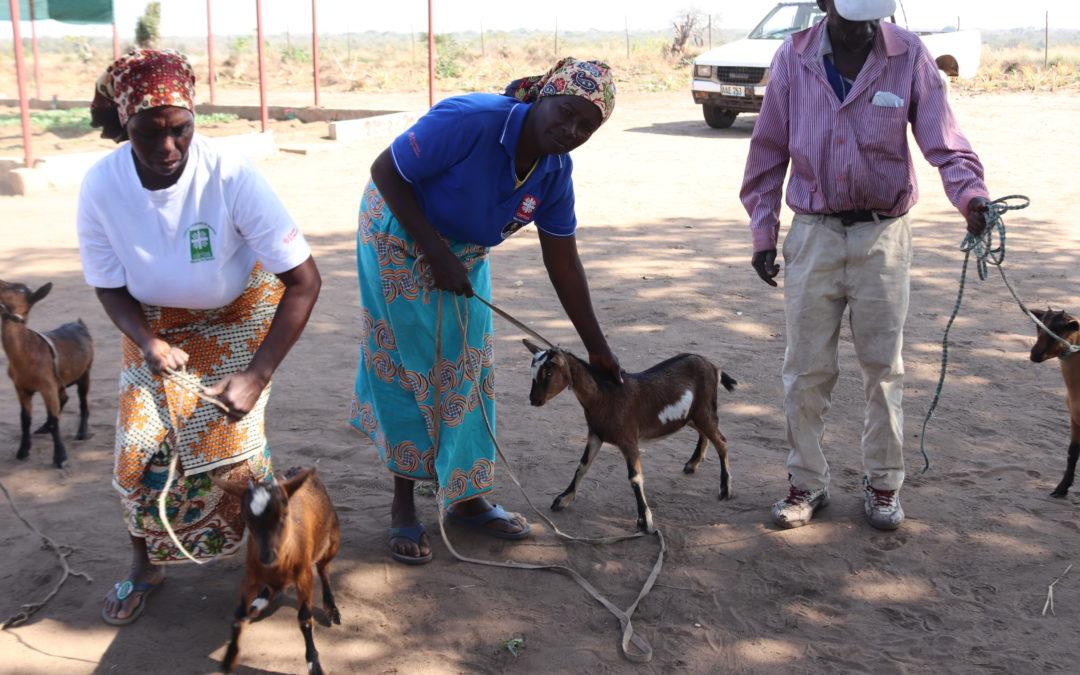 Madre Coraje y la iniciativa 'Más que Palabras' de Fundación Repsol apoyan a 250 familias de Mozambique