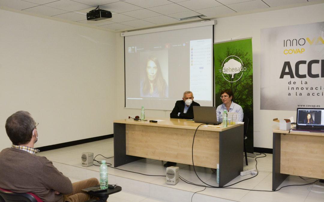 """Fundación PRODE participa en el seminario virtual """"Actuaciones para la mejora del arbolado en la dehesa de Los Pedroches y  resultados obtenidos"""""""