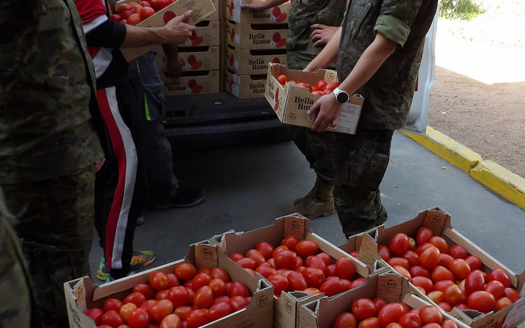 Voluntarios de la Brigada de Cerro Muriano en colaboración con el Banco de Alimentos en Córdoba