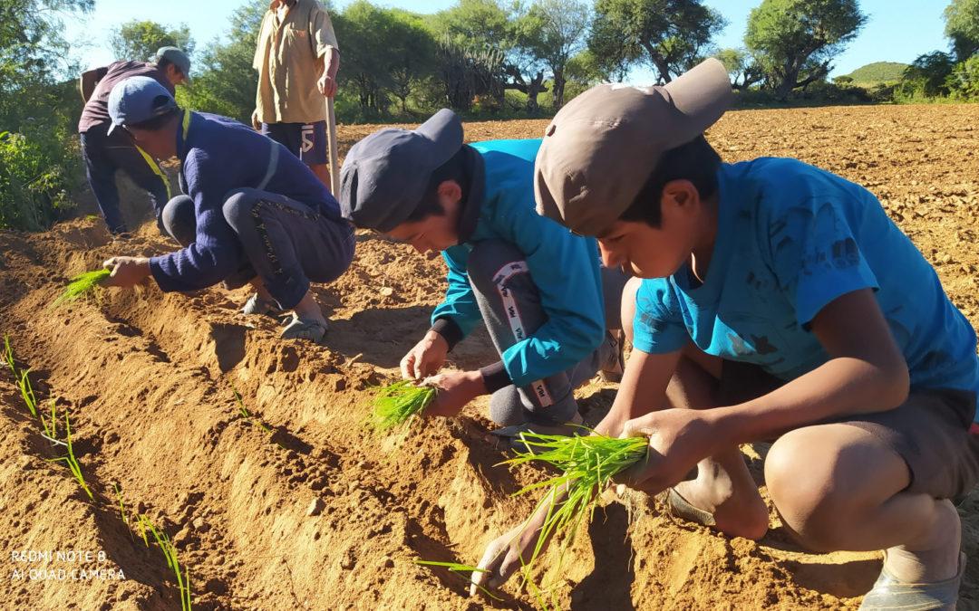 El Parlamento Andaluz presta su ayuda para la mejora de la alimentación y salud de la niñez boliviana afectada por la Covid-  19