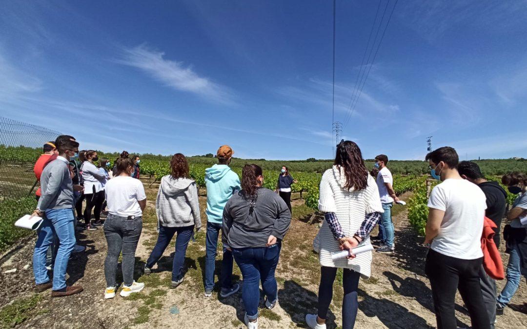 La FSU pone en marcha un servicio de asesoramiento y formación técnica sobre agricultura sostenible para productores de Campiña Sur