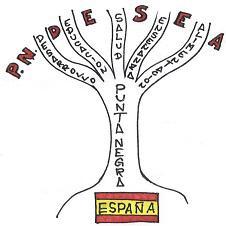 Punta Negra D.E.S.E.A.